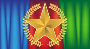 звезда золота drapery Стоковая Фотография RF