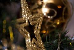 звезда золота в дереве xmass Стоковая Фотография