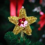 Звезда золота на рождественской елке для текстуры предпосылки Стоковое фото RF