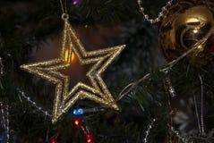Звезда золота праздника рождества в дереве xmass Стоковые Изображения