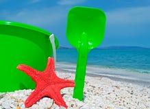 Звезда Красного Моря и зеленое ведро Стоковые Фото