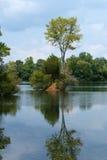 звезда озер уединённая стоковая фотография rf