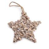 звезда рождества деревенская Стоковые Фото