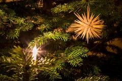 Звезда сторновки на рождественской елке Стоковая Фотография RF