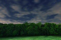 Звездная ночь, белые облака, много звезд, зеленый лес край леса стоковые изображения
