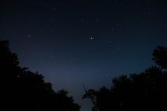 Звезды ночного неба стоковая фотография