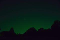 Звезды предпосылки ночи & дерево силуэта Стоковая Фотография