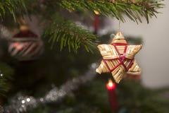 Звезды соломы на рождественской елке Стоковое Изображение RF