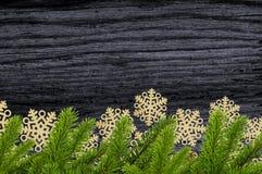 Звезды украшения рождества золота и зеленая ветвь дерева на черном w Стоковое Фото