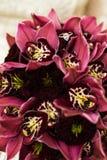 Звените при диамант лежа на букетах свадьбы с красными орхидеями стоковые фотографии rf