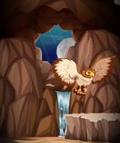 Звероловство сыча на ноче в пещере иллюстрация штока