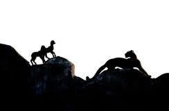звероловство ягнится пантера Стоковое Изображение