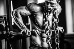 Зверский кавказский комод тренировки культуриста в спортзале Стоковое Изображение