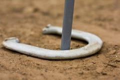 Звонарь в horseshoe игре Стоковые Фотографии RF