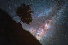 Звёздное небо млечный путь и наклон горы с деревом польза таблицы фото ночи ландшафта установки изображения предпосылки красивейш Стоковые Фотографии RF
