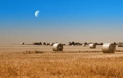 Звёздное небо над bales сена стоковая фотография rf