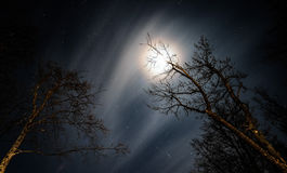 Звёздная, залитая лунным светом, пасмурная ноча Стоковые Изображения