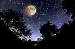 Звёздное небо Стоковая Фотография RF