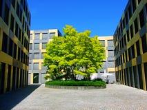 здание, архитектура, квартира, дом, город, дом, экстерьер, жилой, улица, небо, новый, городской, голубое, кондо, квартиры, офис Стоковая Фотография