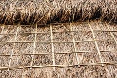 Здание завода текстуры крупного плана крыши соломы Стоковое Изображение