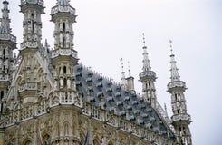 здание муниципалитет leuven Бельгии Стоковые Фотографии RF