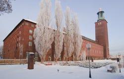здание муниципалитет stockholm Стоковое Изображение