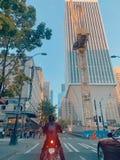 Здание Сиэтл стоковая фотография rf