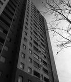 Здание черно-белое стоковое изображение
