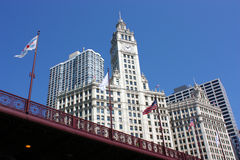 здание chicago wrigley Стоковое Изображение