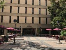 Здание Williams Brice на кампусе университета Южной Каролины стоковые изображения