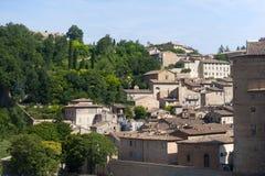 здания Италия маршируют старый urbino Стоковое Фото