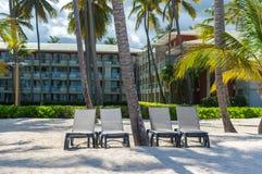 Здания и стулья среди пальм стоковые фото