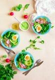 Здоровая еда вытрезвителя служила в шарах, взгляде сверху Стоковое Изображение RF