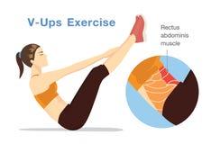 Здоровая женщина бросая вызов abdominis rectus muscle с V-поднимает разминку бесплатная иллюстрация