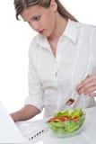 здоровая женщина серии уклада жизни компьтер-книжки Стоковое Изображение RF