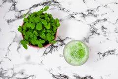 Здоровая концепция vegan зеленый smoothie Superfood, вытрезвитель и здоровая еда шейкер кредитора на черно-белой предпосылке стоковая фотография rf