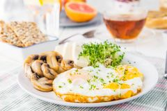 Здоровая плита с взбитыми яйцами, сыр завтрака, зажарила грибы и зеленые цвета ростка микро- и другие закуски и пить на Стоковые Фотографии RF