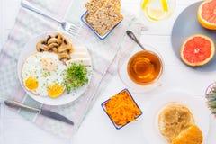 Здоровая плита с взбитыми яйцами, сыр завтрака, зажарила грибы и зеленые цвета ростка микро- и другие закуски и пить на Стоковое Изображение