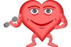 здоровое сердце Стоковая Фотография