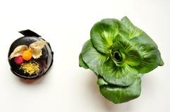 Здорово против нездоровой принципиальной схемы еды стоковые фото