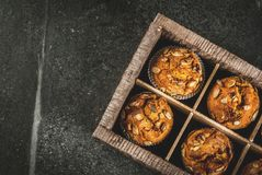 Здоровые булочки тыквы Стоковое фото RF