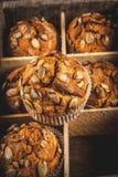 Здоровые булочки тыквы Стоковое Изображение