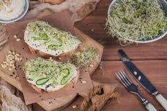 Здоровые вегетарианские bruschettas с хлебом, микро- зеленые цвета, hummus, Стоковое Фото