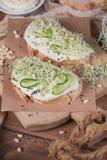 Здоровые вегетарианские bruschettas с хлебом, микро- зеленые цвета, hummus, Стоковая Фотография RF