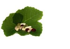 здоровые витамины Стоковые Изображения RF