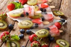 Здоровые все Popsicles плодоовощ с клубниками, кивиом и bluebe Стоковое Фото