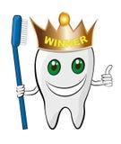 здоровые зубы Стоковая Фотография