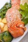здоровые salmon овощи стоковое изображение rf