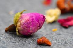 Здоровый высушенный чай цветка стоковое изображение