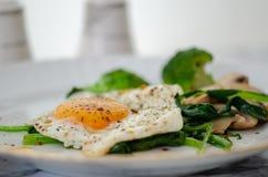 Здоровый домодельный завтрак с грибами и шпинатом яя стоковое изображение